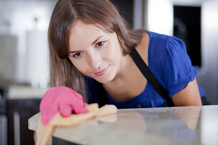 Spotless Cleaning Services, Miami, FL, Maid Services