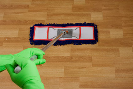 Spotless Cleaning Services, Biscayne Bay, FL, Maid Services